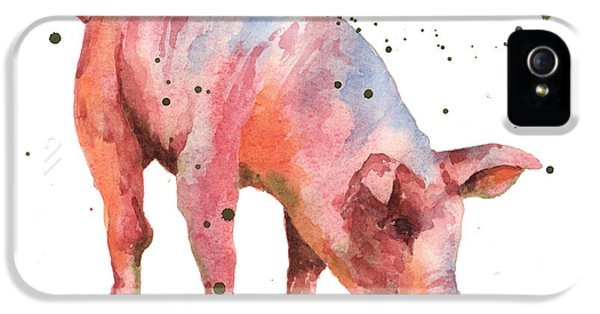 Pig iPhone 5 Case - Pig Painting by Alison Fennell