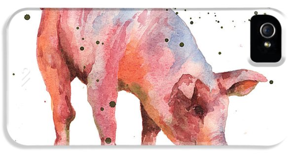Pig Painting IPhone 5 / 5s Case by Alison Fennell