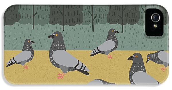 Pigeons Day Out IPhone 5 Case by Nicole Wilson