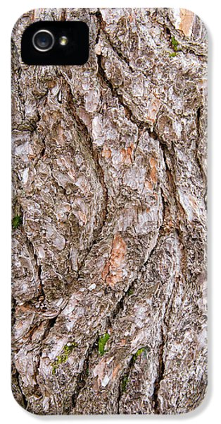 Pine Bark Abstract IPhone 5 Case by Christina Rollo