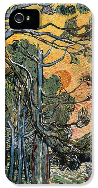 Pine Trees At Sunset IPhone 5 Case