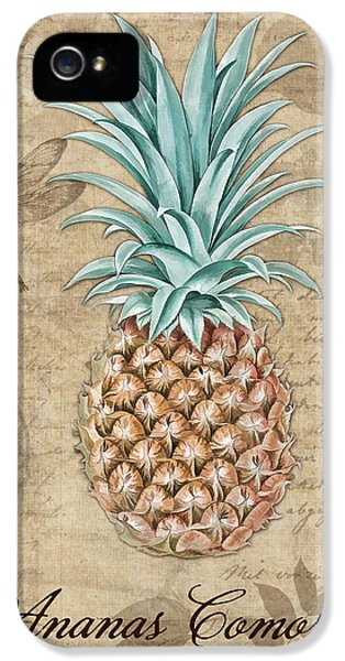 Pineapple, Ananas Comosus Vintage Botanicals Collection IPhone 5 Case by Tina Lavoie