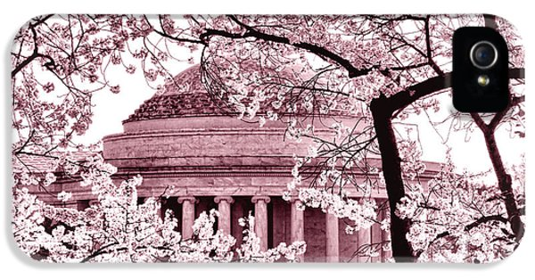 Pink Cherry Trees At The Jefferson Memorial IPhone 5 Case by Olivier Le Queinec