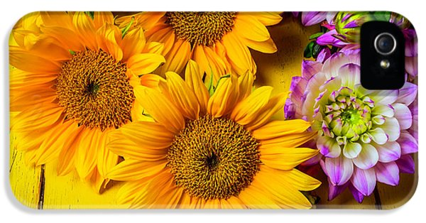 Pink Dahlias And Sunflowers IPhone 5 Case