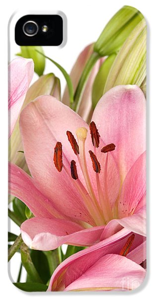Water Drop iPhone 5 Cases - Pink Lilies 07 iPhone 5 Case by Nailia Schwarz