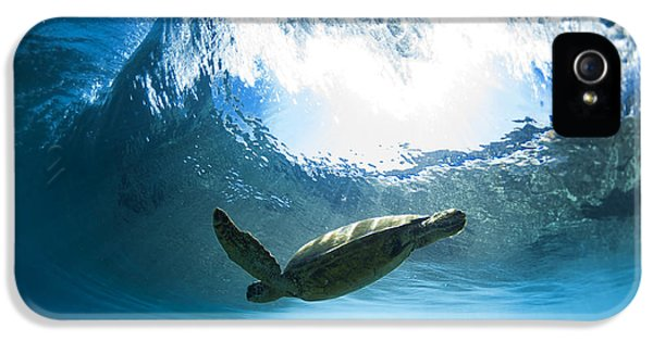 Turtle iPhone 5 Case - Pipe Turtle Glide by Sean Davey