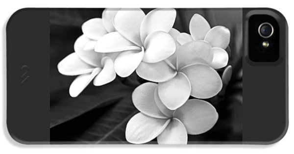 Plumeria - Black And White IPhone 5 Case by Kerri Ligatich