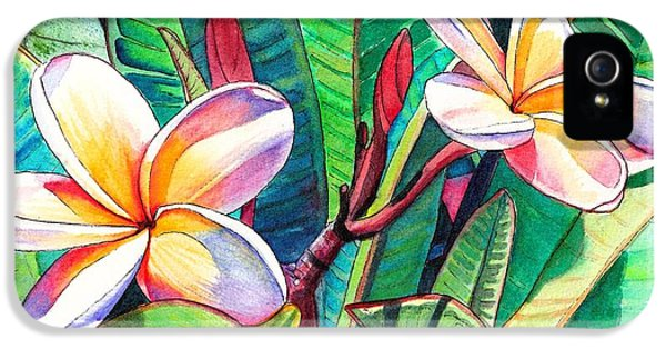 Plumeria Garden IPhone 5 Case by Marionette Taboniar