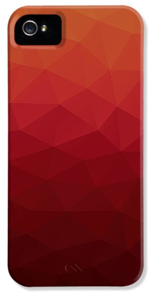 Polygon IPhone 5 Case by Mike Taylor