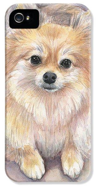 Pomeranian Watercolor IPhone 5 Case