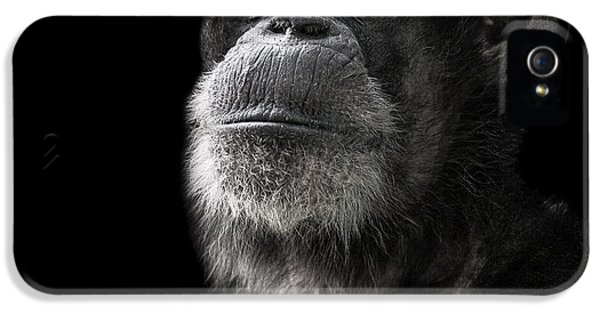 Ape iPhone 5 Case - Ponder by Paul Neville