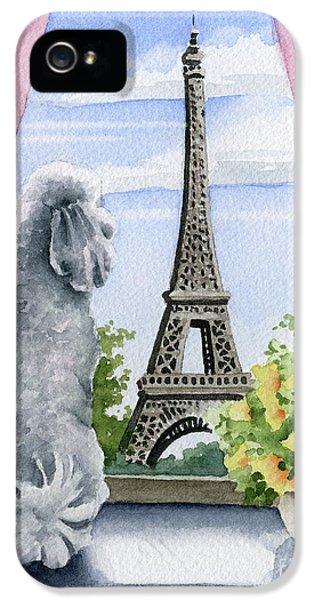 Paris iPhone 5 Case - Poodle In Paris by David Rogers