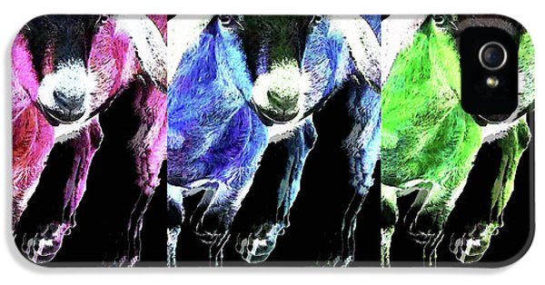 Pop Art Goats Trio - Sharon Cummings IPhone 5 / 5s Case by Sharon Cummings