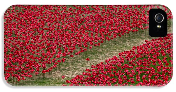 Poppies Of Remembrance IPhone 5 Case