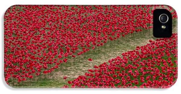 Poppies Of Remembrance IPhone 5 Case by Martin Newman