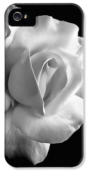 Porcelain Rose Flower Black And White IPhone 5 Case