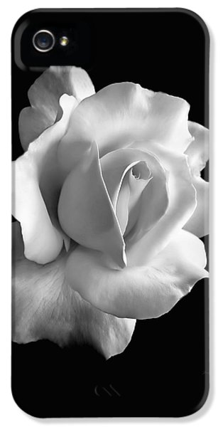 White iPhone 5 Case - Porcelain Rose Flower Black And White by Jennie Marie Schell