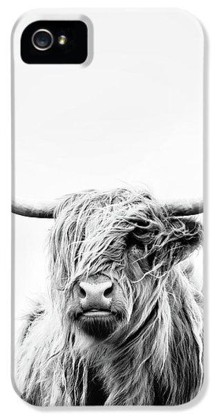 Cow iPhone 5 Case - Portrait Of A Highland Cow - Vertical Orientation by Dorit Fuhg