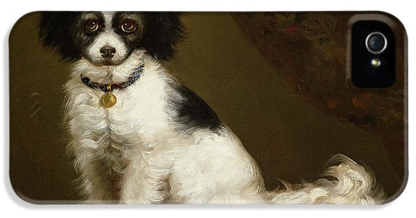 Portrait Of A Spaniel IPhone 5 Case