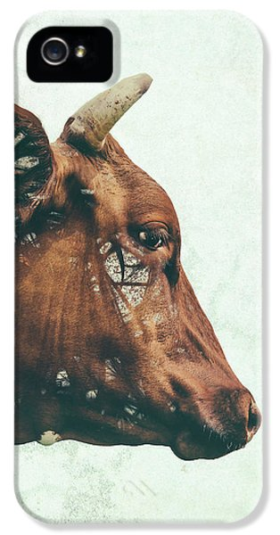 Cow iPhone 5 Case - Portrait Of Bess by Katherine Smit