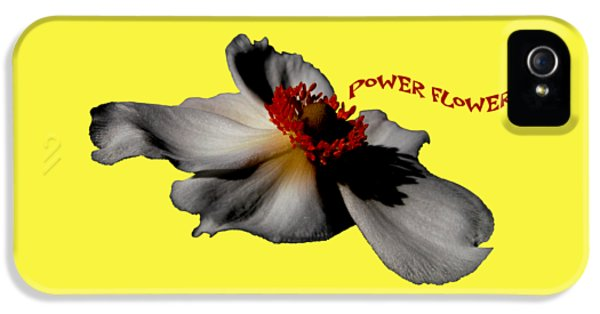 iPhone 5 Case - Power Flower Anemone by Orphelia Aristal