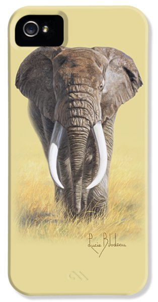 Bull iPhone 5 Case - Power Of Nature by Lucie Bilodeau