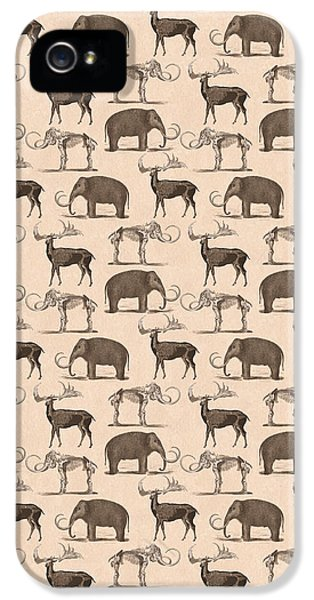 Prehistoric Animals IPhone 5 / 5s Case by Antique Images