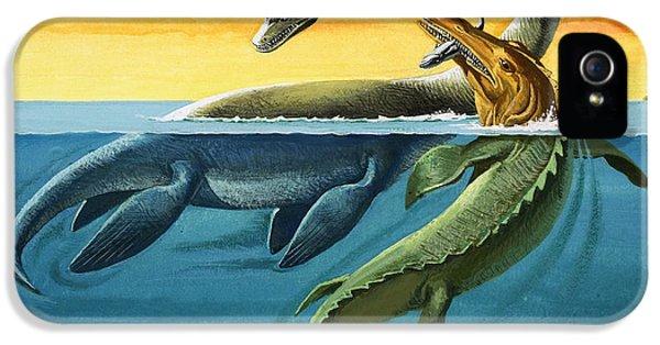 Prehistoric Creatures In The Ocean IPhone 5 Case by English School