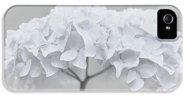 Pretty In White Hydrangea Flowers IPhone 5 Case by Jennie Marie Schell