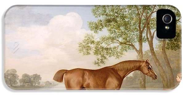 Pumpkin With A Stable-lad IPhone 5 Case by George Stubbs