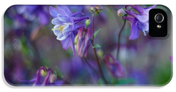 Purple Columbine Montage IPhone 5 Case by Mike Reid
