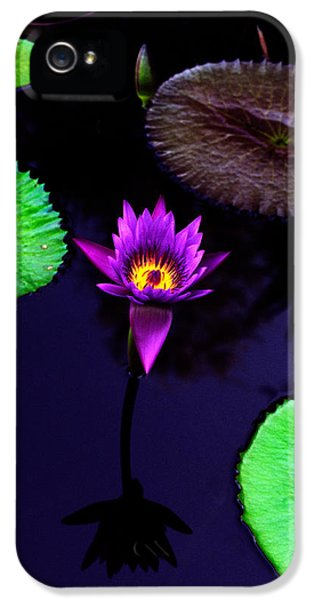 Purple Lily IPhone 5 Case by Gary Dean Mercer Clark