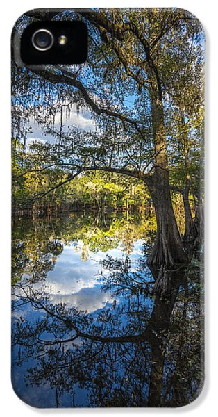 Ibis iPhone 5 Case - Quiet Embrace by Marvin Spates