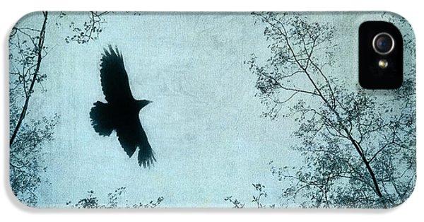 Blackbird iPhone 5 Case - Spread Your Wings by Priska Wettstein