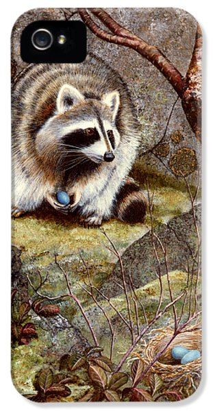 Raccoon Found Treasure  IPhone 5 Case by Frank Wilson