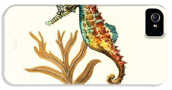 Rainbow Seahorse IPhone 5 / 5s Case by Juan Bosco