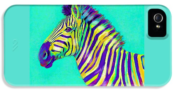 Rainbow Zebra 2013 IPhone 5 Case by Jane Schnetlage