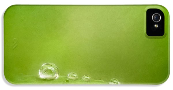 Raindrops On Green IPhone 5 Case