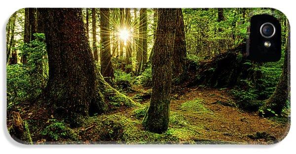 Rainforest Path IPhone 5 Case