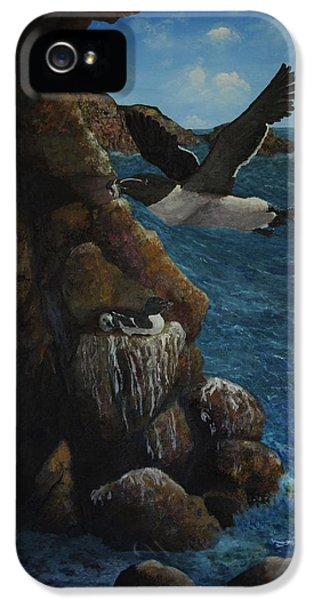 Razorbills IPhone 5 Case by Eric Petrie