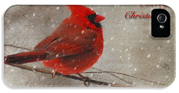 Red Bird In Snow Christmas Card IPhone 5 Case by Lois Bryan