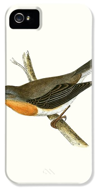 Red Breasted Flycatcher IPhone 5 / 5s Case by English School
