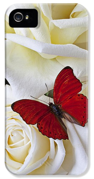 Red Butterfly On White Roses IPhone 5 / 5s Case by Garry Gay