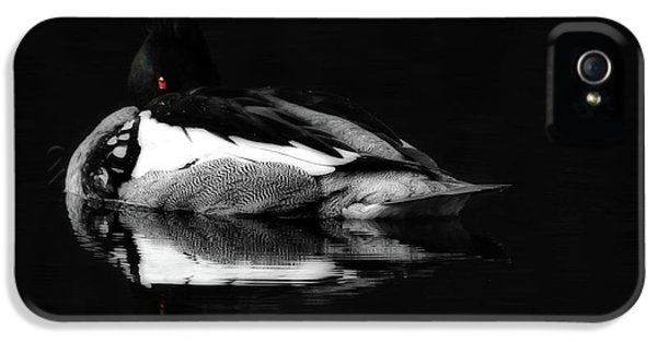 Red Eye IPhone 5 / 5s Case by Lori Deiter