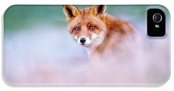 Red Fox In A Mysterious World IPhone 5 Case