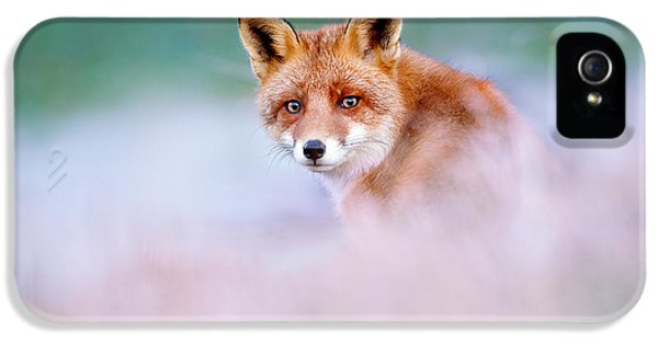 Red Fox In A Mysterious World IPhone 5 Case by Roeselien Raimond