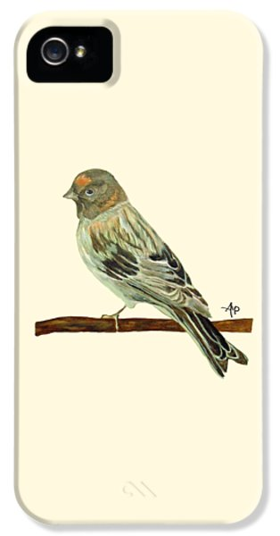Red-fronted Serin IPhone 5 Case by Angeles M Pomata