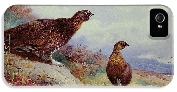Red Grouse On The Moor, 1917 IPhone 5 / 5s Case by Archibald Thorburn