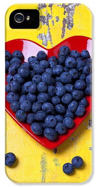 Red Heart Plate With Blueberries IPhone 5 Case by Garry Gay