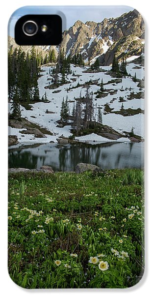 IPhone 5 Case featuring the photograph Red Peak And Willow Lake by Aaron Spong